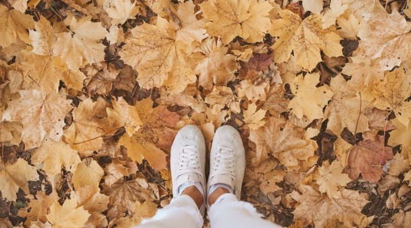 Planning Ahead For Autumn Marketing